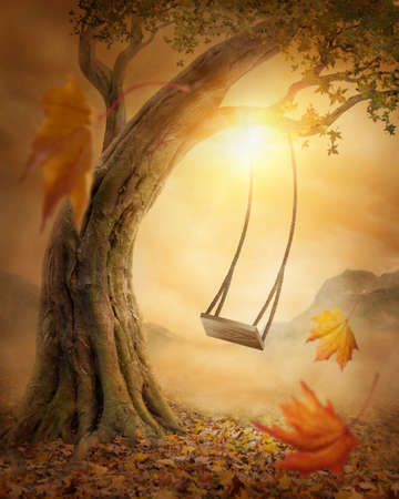 Alte Schaukel aus einem großen Baum hängen Standard-Bild
