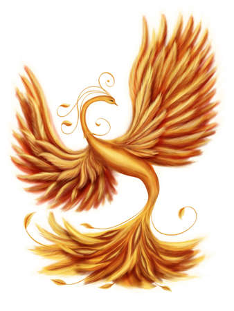 bird feathers: Magic firebird on a white background Stock Photo
