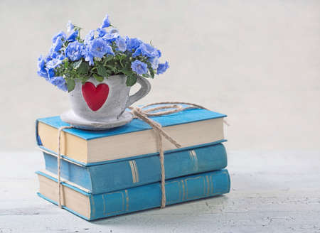 estanterias: Pila de libros y flores azules