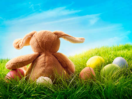 holiday tradition: Colorful easter eggs and rabbit on green grass