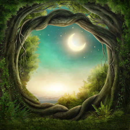 fantasy landscape: Enchanted dark forest in the moonlight