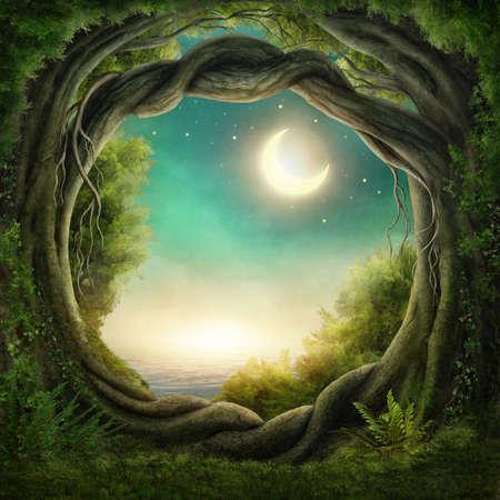Enchanted donker bos in het maanlicht