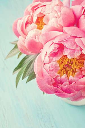 rosas rosadas: Flores de peon�a en un florero blanco Foto de archivo