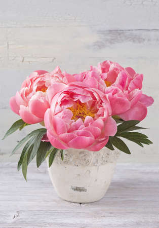 abstract grunge: Peony flowers in a white vase