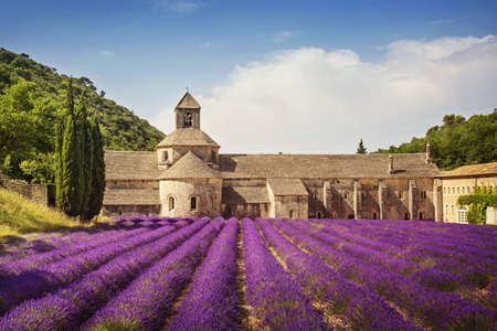 senanque: Senanque Abbey with lavender fields