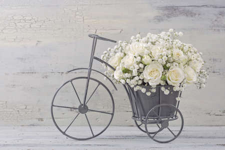 White roses in a bicycle vase Stockfoto
