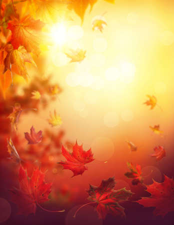Autumn falling leaves on colorful background Stock Photo
