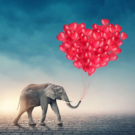 red sky: Elephant going with red balloons