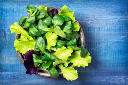 cornsalad: Mixed green salad leaves in a bowl on a blue background