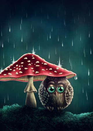 fairy toadstool: Little owl sitting under mushrooms Stock Photo