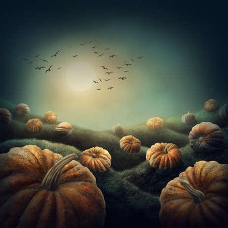 surreal: Dark landscape with orange pumpkins