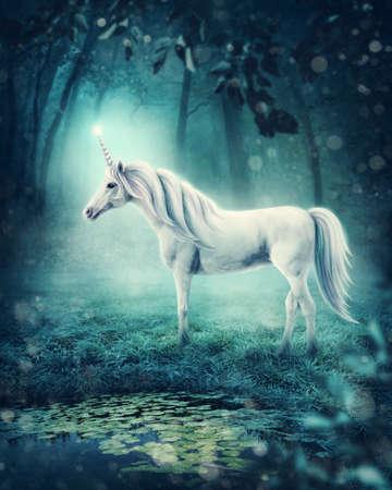Weißes Einhorn in einem dunklen Wald Standard-Bild - 74343836