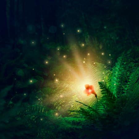 Blooming fern flower, a magic flower in Slavic mythology Stock Photo