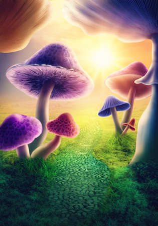 Colorful mushrooms in the meadow
