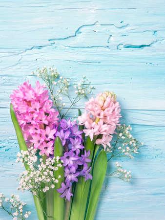 青い背景の上のヒヤシンスの花 写真素材