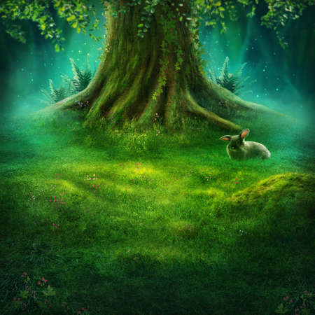 Big tree in the enchanted forest