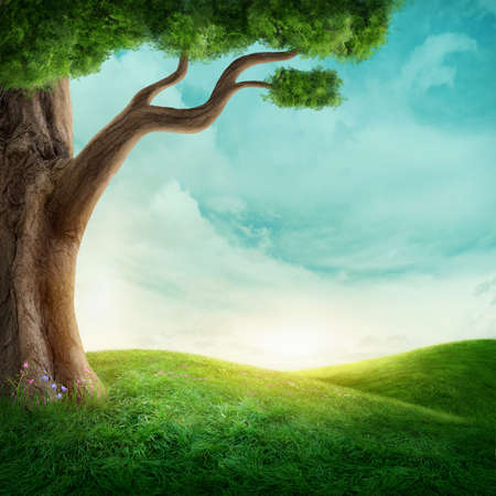 Big tree in the meadow. Image with copy space