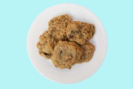 oatmeal cookie: Freshly baked cookies on a white plate  path is included
