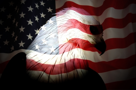 superimposed: Bald eagle superimposed on American Stars and Strips flag, black background. Stock Photo