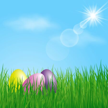 sky and grass: Three colorful Easter Eggs in the grass on sunny sky background. Vector illustration.
