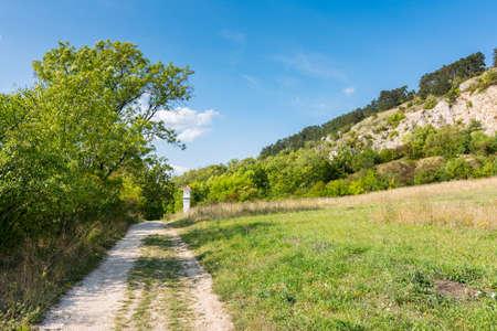 Vineyard near Palava, czech national park, wine agriculture and farming, nature landscape in summer, blue sky.