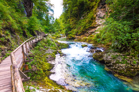 Vintgar gorge, Slovenia. River near the Bled lake with wooden tourist paths, bridges above river and waterfalls. Hiking in the Triglav national park. Fresh nature, blue water in the forest. Wild trees. 版權商用圖片