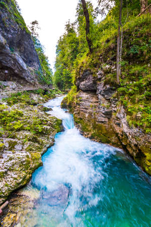 Vintgar gorge, Slovenia. River near the Bled lake with wooden tourist paths, bridges above river and waterfalls. Hiking in the Triglav national park. Fresh nature, blue water in the forest. Wild trees. Stock fotó