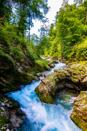Vintgar gorge, Slovenia. River near the Bled lake with wooden tourist paths, bridges above river and waterfalls. Hiking in the Triglav national park. Fresh nature, blue water in the forest. Wild trees. Imagens