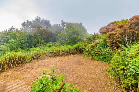 The top of Doi Inthanon mountain in Thailand national park and rainforest. Weather after rain, small visibility. Unlucky condition for tourist.