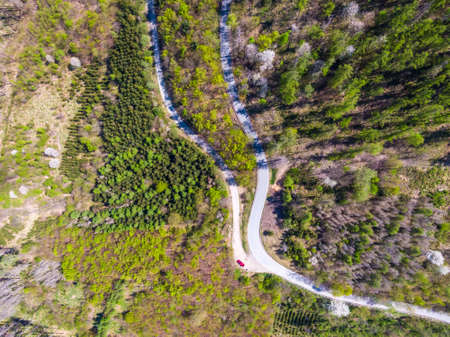 Aerial top down drone view of curve road in the forest.