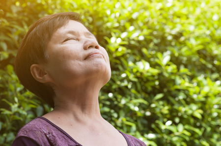 Happiness Asian senior woman relaxing and breathing fresh air in park with sunlight. copy space. Plants Natural background. Stock Photo