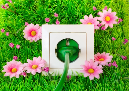 Green power plug into power outlet on the grass with flowers photo