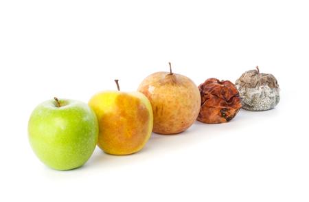 residuos organicos: Cinco manzanas en una fila en varios estados de descomposición contra el fondo blanco