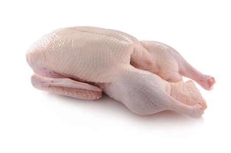 carne cruda: listo para cocinar pato fotografiado en el estudio con fondo blanco  Foto de archivo