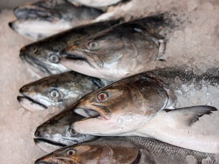 gills: Fish on Ice For Sale at Pike Place Market Stock Photo
