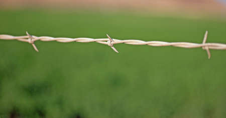 barbed wire: Closeup of Barbed Wire Stock Photo