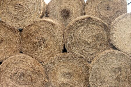 ranching: Stacked Bales of Hay After an Early Harvest Stock Photo