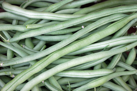 ejotes: De cerca de judías verdes frescas