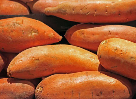 sweet potatoes: Sweet Potatoes for Sale at the Market Stock Photo