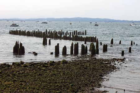 pilings: Mossy Rocks, Wooden Pilings in the Columbia River with fishing boats in the background Stock Photo