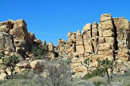 joshua tree national park: Rock Formations at Joshua Tree National Park