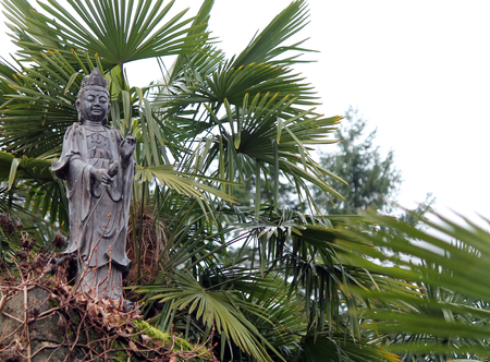 Statue of Buddha Surrounded by Palm Fronds
