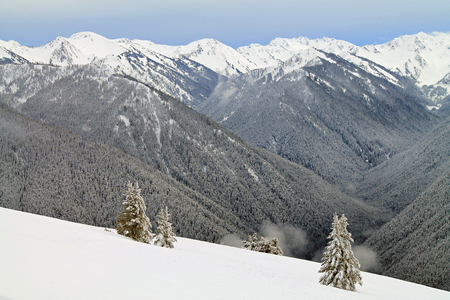snowy field: Snow-capped Mountain Range Beyond a Snowy Field Stock Photo