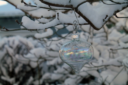 irridescent: Irridescent Glass Christmas Ornament Hanging on a Snow-Covered Tree Branch Stock Photo