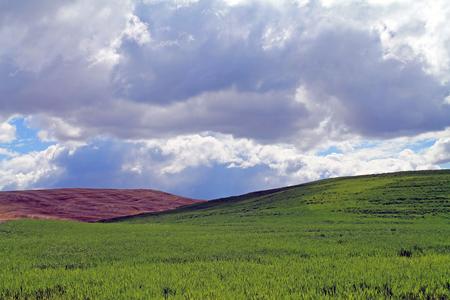 Rolling Farm Fields Under a Cloudy Sky