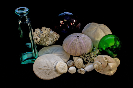 Still Life of Seashells, Barnacles, Bottle, and Glass Floats