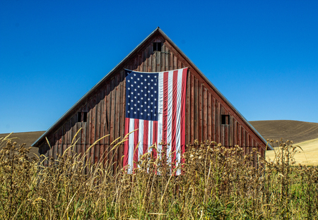 Weathered Red Barn with American Flag in a wheat field against a bright blue sky