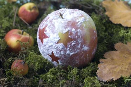 christmas apple: Natale mela e delle foglie � il muschio Archivio Fotografico