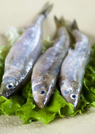 smelt: three smelt on plate and lettuce Stock Photo
