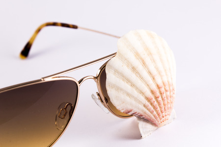 bivalve: bivalve on sunglasses and white background brings summer feelings